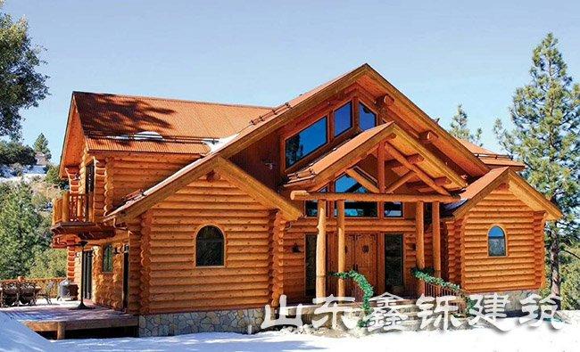 大户型木屋别墅项目